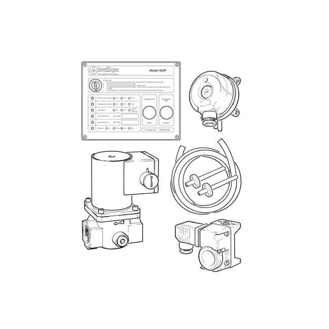 "Intelligas EGIP Kit with Gas Valve - 2"""