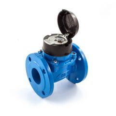 """Itron Woltex Cold Water Meter - 2"""" DN50"""