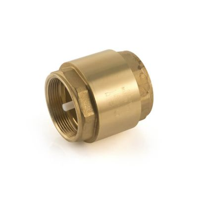 "Single Check Valve 110°C - 1.1/2"" BSP"