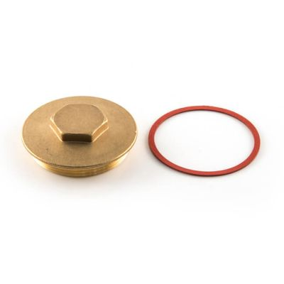 Immersion Heater Plug with Washer - Brass