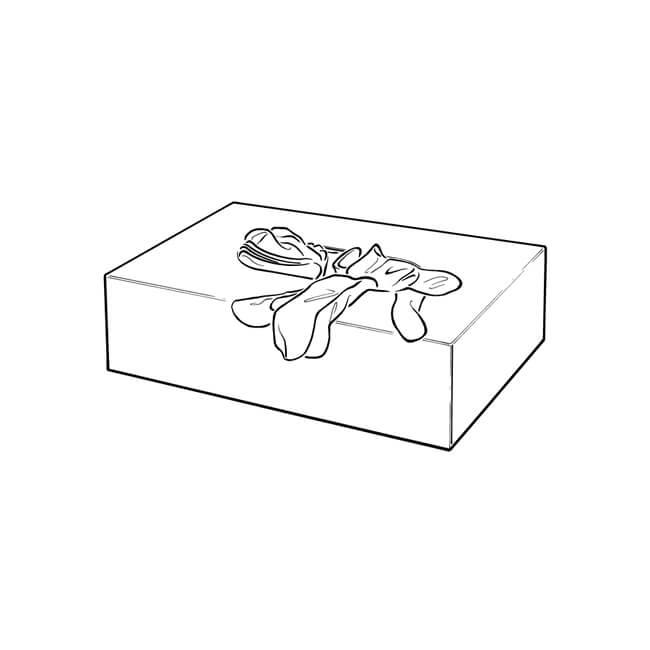 Nitrile (X large) - Box of 100